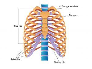 compensation for broken rib injuries